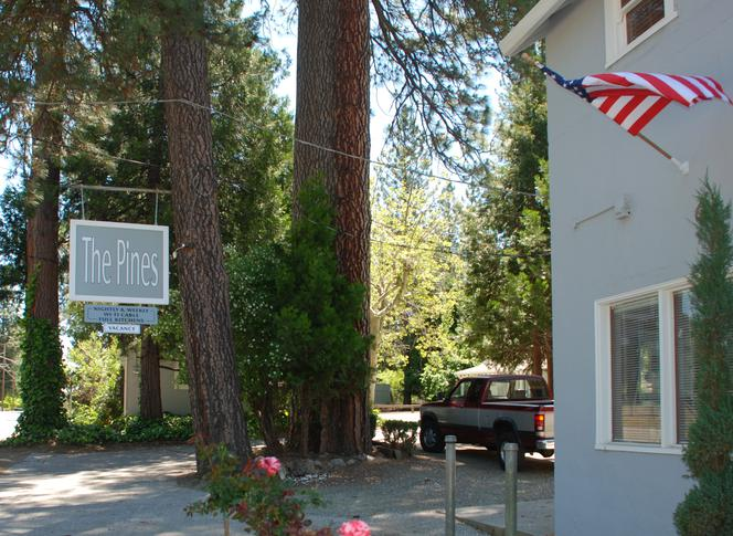 The Pines Motel and Cottages Photos and Video